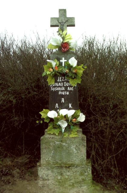 Akmeninis kryžius su betoniniu pagrindu stovi šalia Kraučeliūnų sodybos