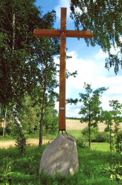 Kryžius pastatytas 2010 m. prie kaimo kelio Vito Petruškevičiaus ir Tomo Jonušonio pastangomis. Anksčiau čia stovėjęs senas medinis kryžius